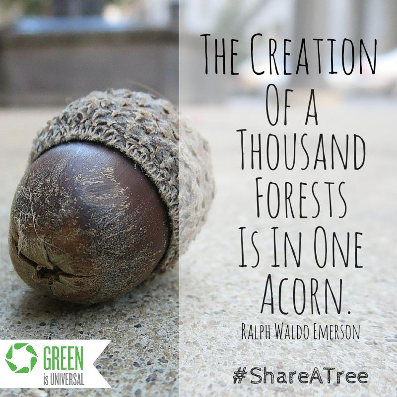 #shareatree